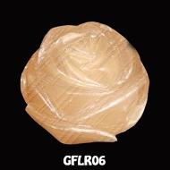 GFLR06