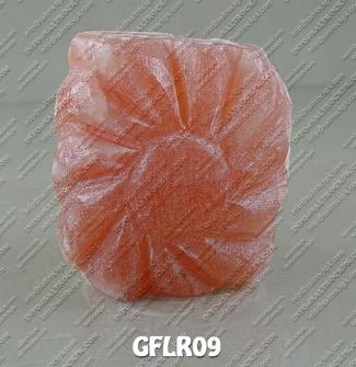 GFLR09