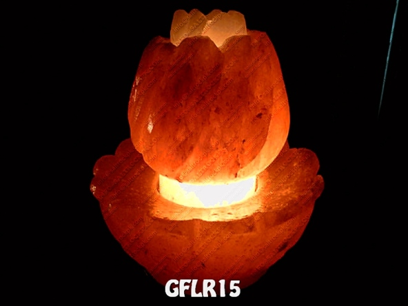 GFLR15