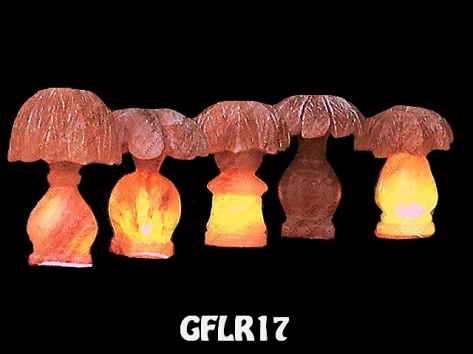 GFLR17