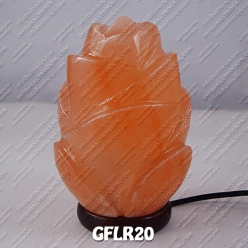 GFLR20