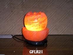 GFLR21