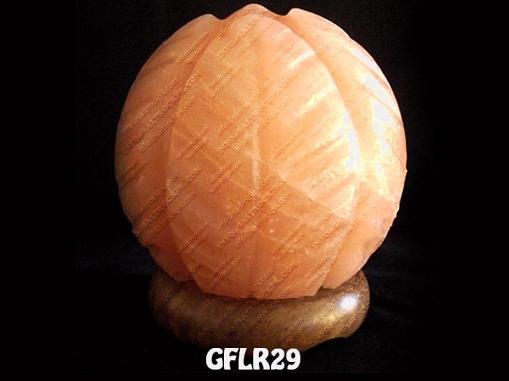 GFLR29