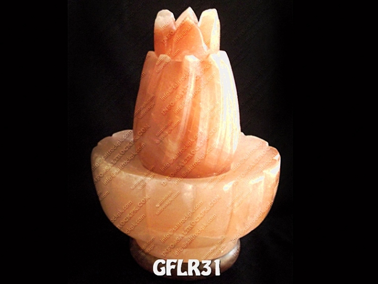 GFLR31