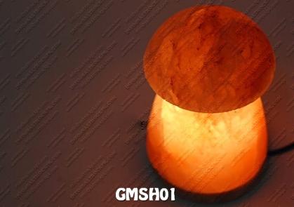 GMSH01