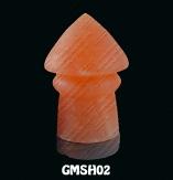 GMSH02