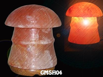 GMSH04