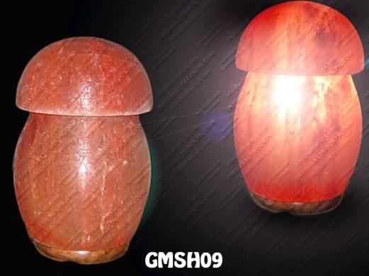 GMSH09