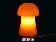 GMSH10