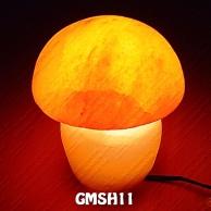 GMSH11