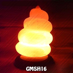 GMSH16