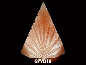 GPYD19