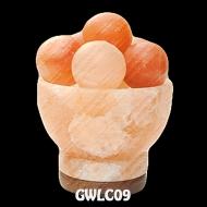 GWLC09