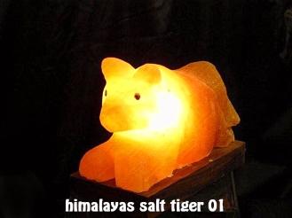 himalayas salt tiger 01
