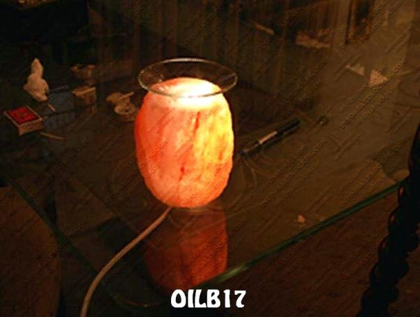 OILB17