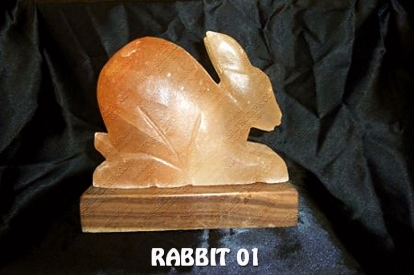 RABBIT 01