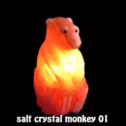 salt crystal monkey 01