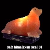 salt himalayan seal 01