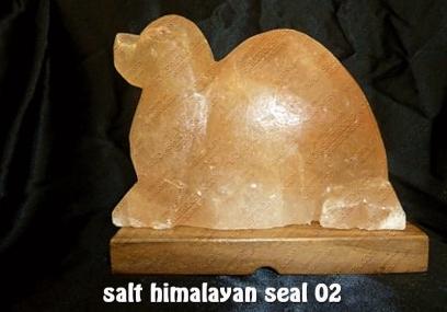salt himalayan seal 02