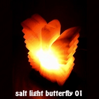 salt light butterfly 01