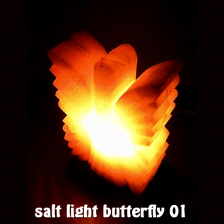 salt light butterfly 01