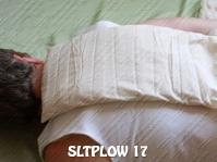 SLTPLOW 17