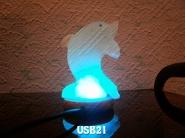 USB21