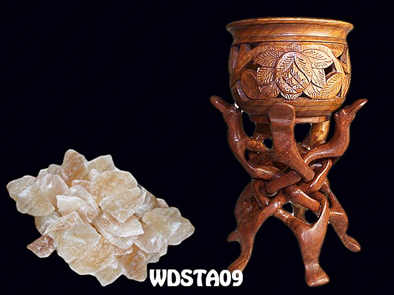 WDSTA09