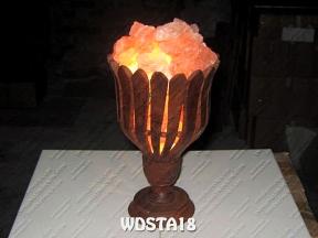 WDSTA18