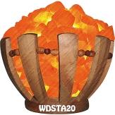 WDSTA20