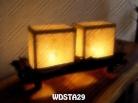 WDSTA29