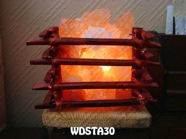 WDSTA30