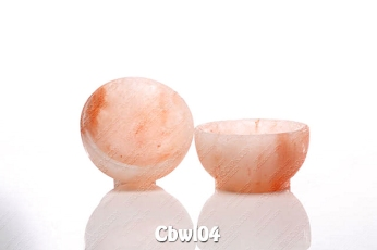 Cbwl04