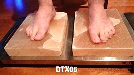 DTX05