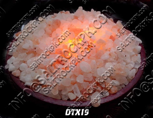 DTX19