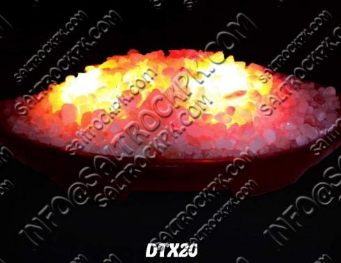 DTX20