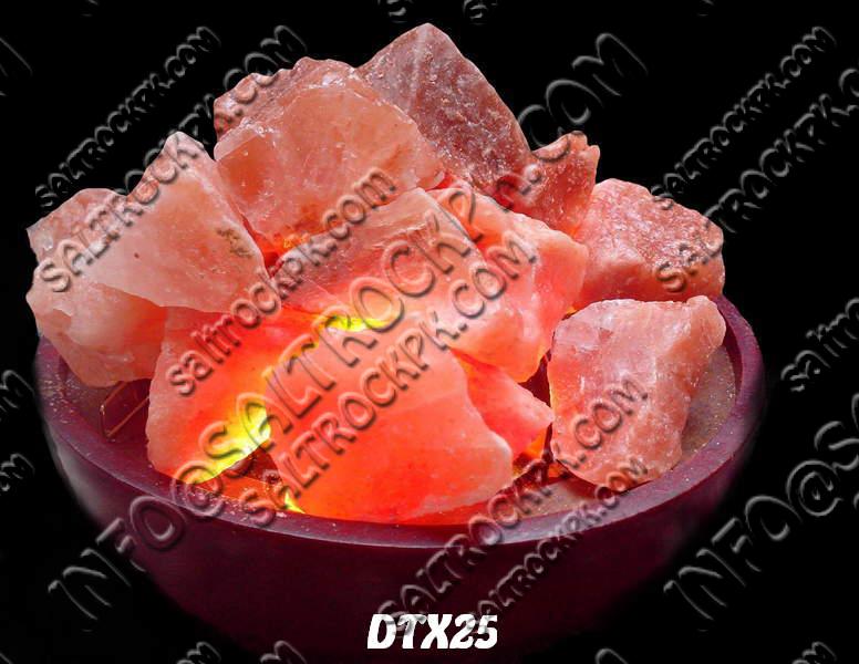 DTX25