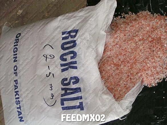 FEEDMX02