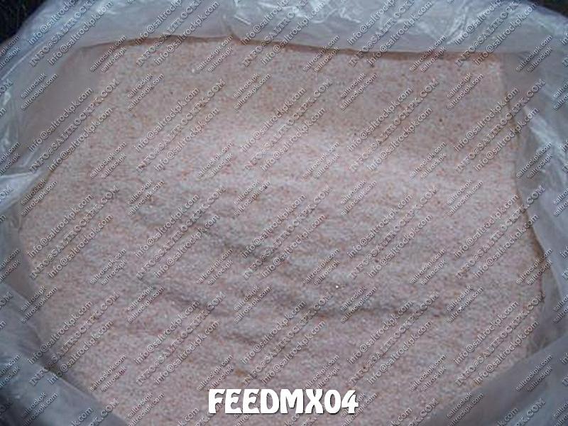 FEEDMX04