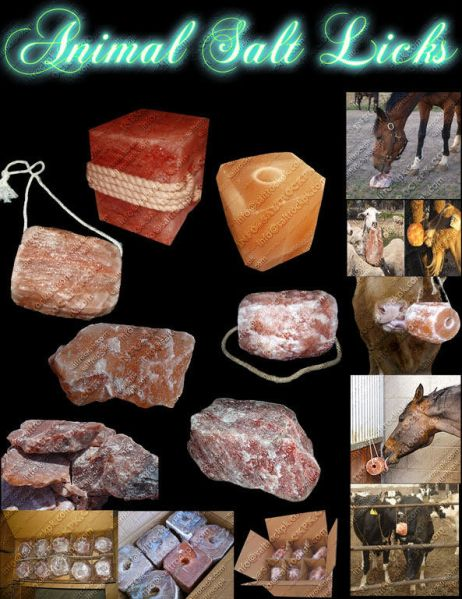 SALTROCKPK Manufacturer & Exporter Of Salt Lamps, Candle Holder, Detoxer, Tiles, Salt Cookware ...